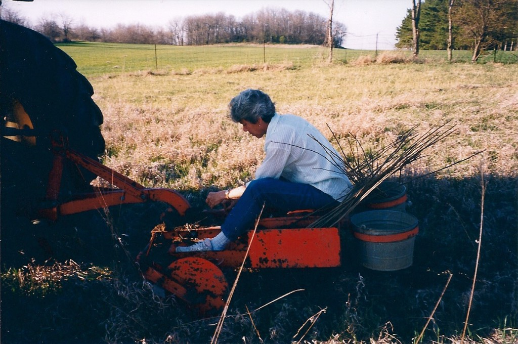 Spring, 2000, operating the planter in the field behind the pond