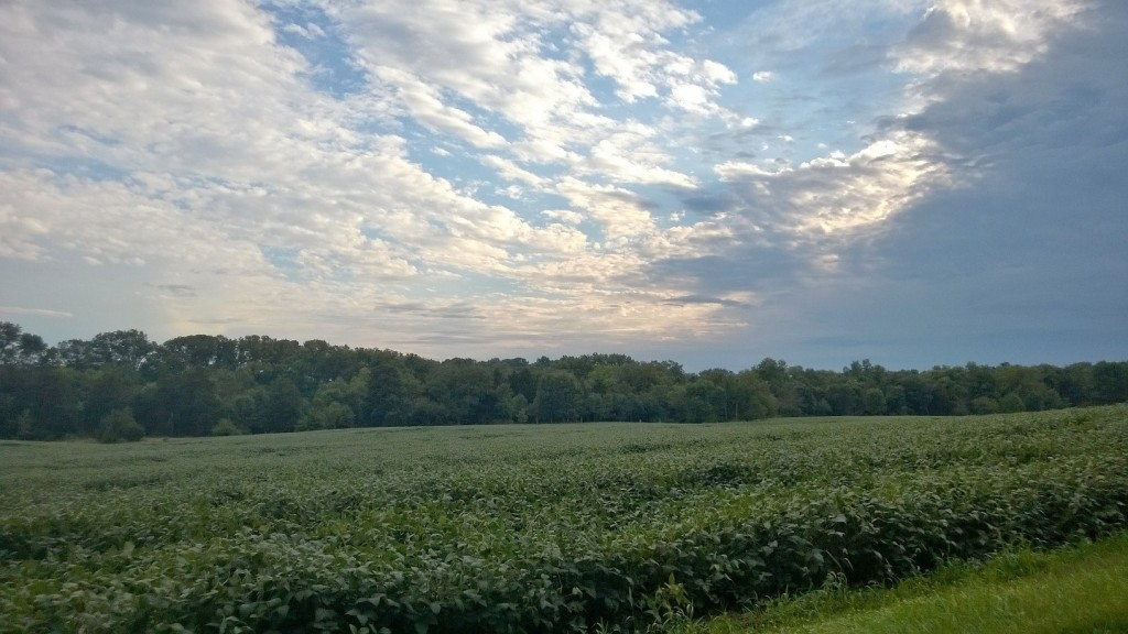 The clouds of Autumn arriving over the south bean field, Sept. 2014